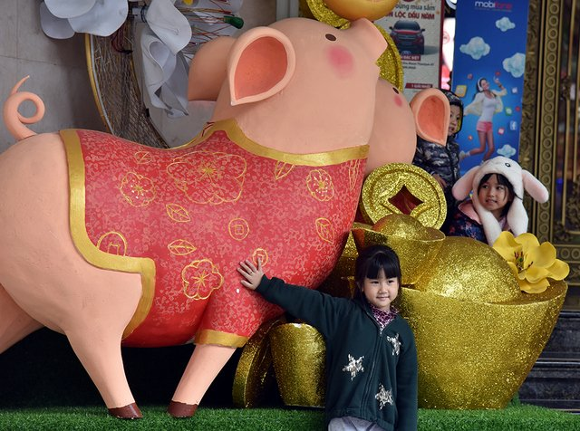 Golden pigs – the mascot of the 2019 Lunar New Year attracting children to take photos.