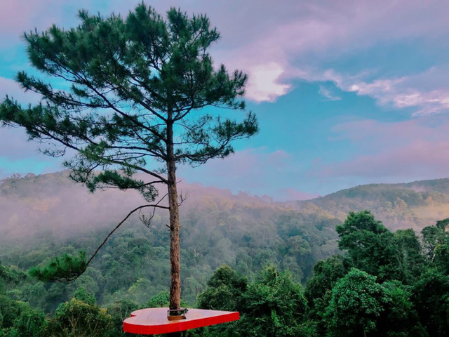 A new check-in point in Da Lat loved by the youth and photographers