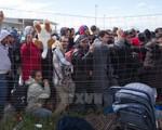 5.000 người dân Đức biểu tình phản đối chính sách nhập cư
