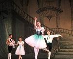 Đón Giáng sinh sớm cùng vở ballet nổi tiếng Kẹp hạt dẻ