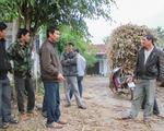 Gia Lai: Nông dân bán mía lấy... đường