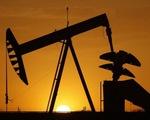 Anh phát hiện trữ lượng dầu mỏ khổng lồ gần sân bay Gatwick