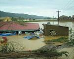 Việt Nam đứng thứ 7 toàn cầu về thiệt hại do biến đổi khí hậu