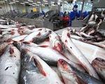 Mỹ kiểm soát mặt hàng cá da trơn nghiêm ngặt hơn