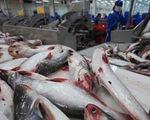 Việt Nam phản đối kết quả áp thuế chống bán phá giá cá tra