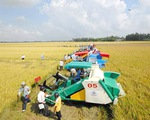 An Giang xúc tiến đầu tư nông nghiệp, nông thôn