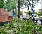 TP.HCM: Mưa dông bất ngờ, ít nhất 6 người thương vong