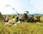 Chính sách tín dụng mới cho nông nghiệp