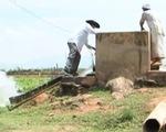 Những sáng kiến chống hạn độc đáo của nông dân Ninh Thuận