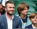 David Beckham nhẹ nhõm khi con trai không muốn chơi bóng đá