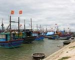 Phê duyệt quy hoạch hệ thống cảng cá, khu neo đậu tránh trú bão