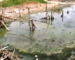 Kiên Giang thiếu nước sinh hoạt nghiêm trọng
