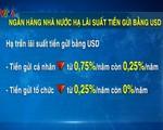 NHNN hạ lãi suất tiền gửi bằng USD: Không lo dòng tiền ngoại tệ ra khỏi Việt Nam