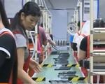 Malaysia áp dụng hệ thống xin thị thực điện tử với lao động nước ngoài
