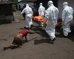 Sierra Leone phát hiện trường hợp dương tính với virus Ebola