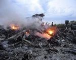 Nhiều quốc gia trên thế giới tưởng niệm 1 năm vụ rơi máy bay MH17