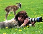 Khoảnh khắc đáng yêu của các loài vật bên nhiếp ảnh gia