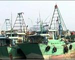 Nỗ lực đưa ngư dân bị Indonesia bắt giữ về nước dịp Tết Nguyên đán