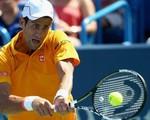 Cincinnati Masters 2015: Djokovic nhọc nhằn vào chung kết gặp Federer