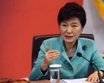 Tổng thống Hàn Quốc trao toàn quyền xử lý MERS cho đội đặc nhiệm