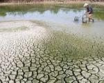 Việt Nam cam kết chống biến đổi khí hậu toàn cầu