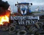 Nông dân Pháp biểu tình vì nông sản bị phá giá