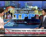 TPP không chỉ toàn màu hồng với Việt Nam?