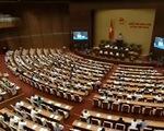 Quốc hội thảo luận về dự thảo Bộ luật Hình sự (sửa đổi)