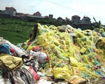 Hãi hùng rác thải bủa vây làng nghề tái chế nhựa Minh Khai
