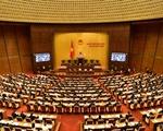 Đại biểu Quốc hội nghe báo cáo thẩm tra dự án Bộ luật tố tụng hình sự