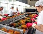 Xuất khẩu rau quả năm nay có thể đạt 2 tỷ USD