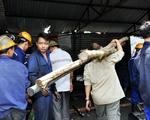 Quảng Ninh: Sập hầm lò, 2 công nhân tử vong