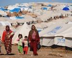 Sự cùng khổ của người tị nạn Syria