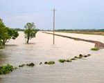Cảnh báo lũ trên các sông từ Nghệ An đến Quảng Ngãi và Bắc Tây Nguyên