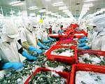 Tỷ giá biến động, xuất khẩu thủy sản gặp khó