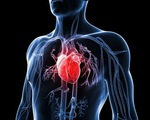 Thiết bị mới dự báo nguy cơ mắc bệnh tim mạch