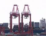 Trung Quốc: Xuất khẩu và nhập khẩu đều giảm mạnh
