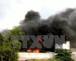 TP.HCM: Cháy lớn thiêu rụi toàn bộ xưởng chứa tôm đông lạnh