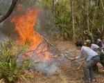 Cháy rừng liên tiếp ở Cao Bằng do đốt vàng mã
