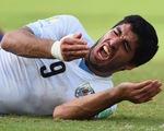 Ngứa răng, Luis Suarez lại cắn?