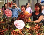 Vải thiều Việt Nam đến với thị trường ASEAN