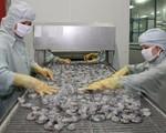 Xuất khẩu thủy sản Việt Nam giảm 1 tỷ USD