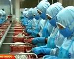 Việt Nam có 4 thị trường xuất khẩu hơn 1 tỷ USD