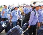Xuất khẩu lao động chui: Rủi ro khôn lường!