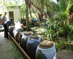 Ghi nhận 10 ca tử vong do sốt xuất huyết trong cả nước