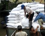 Hỗ trợ gần 3.900 tấn gạo cho tỉnh Tuyên Quang, Nghệ An