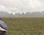 """Dàn sao """"Kong: Skull Island"""" liên tục khoe ảnh ở Việt Nam"""