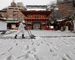 Hàng trăm người bị thương do tuyết rơi dày ở Nhật Bản