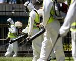 Việt Nam bắt tay vào cuộc chiến chống virus Zika