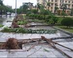Bão số 1 đã suy yếu thành áp thấp nhiệt đới